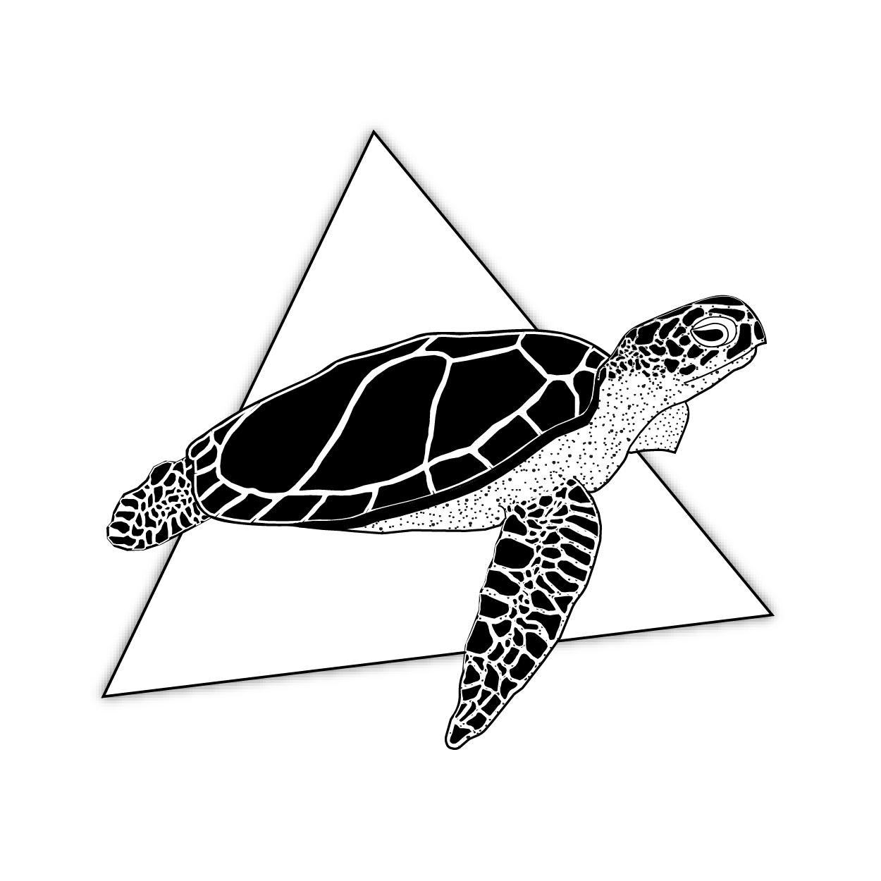 Turtles Space